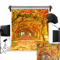 Kate 5x7ft/1.5m(W) x2.2m(H) Fall Backdrop Yellow Photography Backdrops Autumn Backgrounds Beautiful Leaves Trail Photo Studio Background