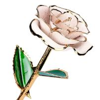 Gold Dipped Rose, 24K Gold Rose Flower with Long Stem Romantic Gift for Women on Birthday, Valentine's Day, Mother's Day, Christmas (White)
