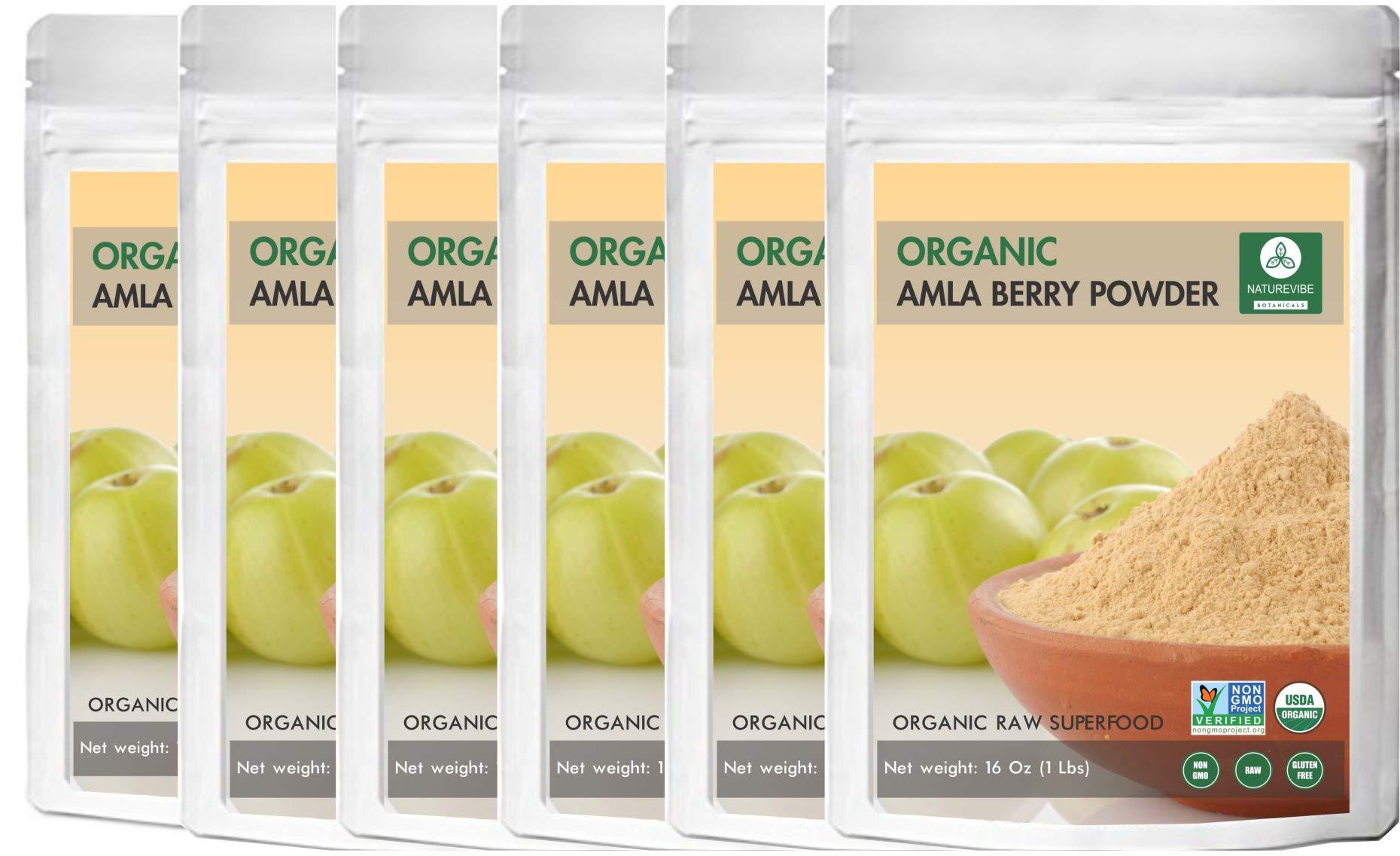 Organic Amla Berry Powder 5lbs (5 packs of 1lb each) by Naturevibe Botanicals - Organic Gluten-Free, Raw & Non-GMO | Helps improve Hair Health | Source of vitamin C