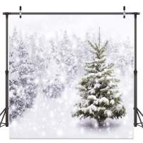 Dudaacvt 10x10ft Vinyl Christmas Eve Winter Snowy Backdrop Party Supplies for Xmas New Year Decorations Children Birthday Baby Shower Photo Booth Shoot Studio D082