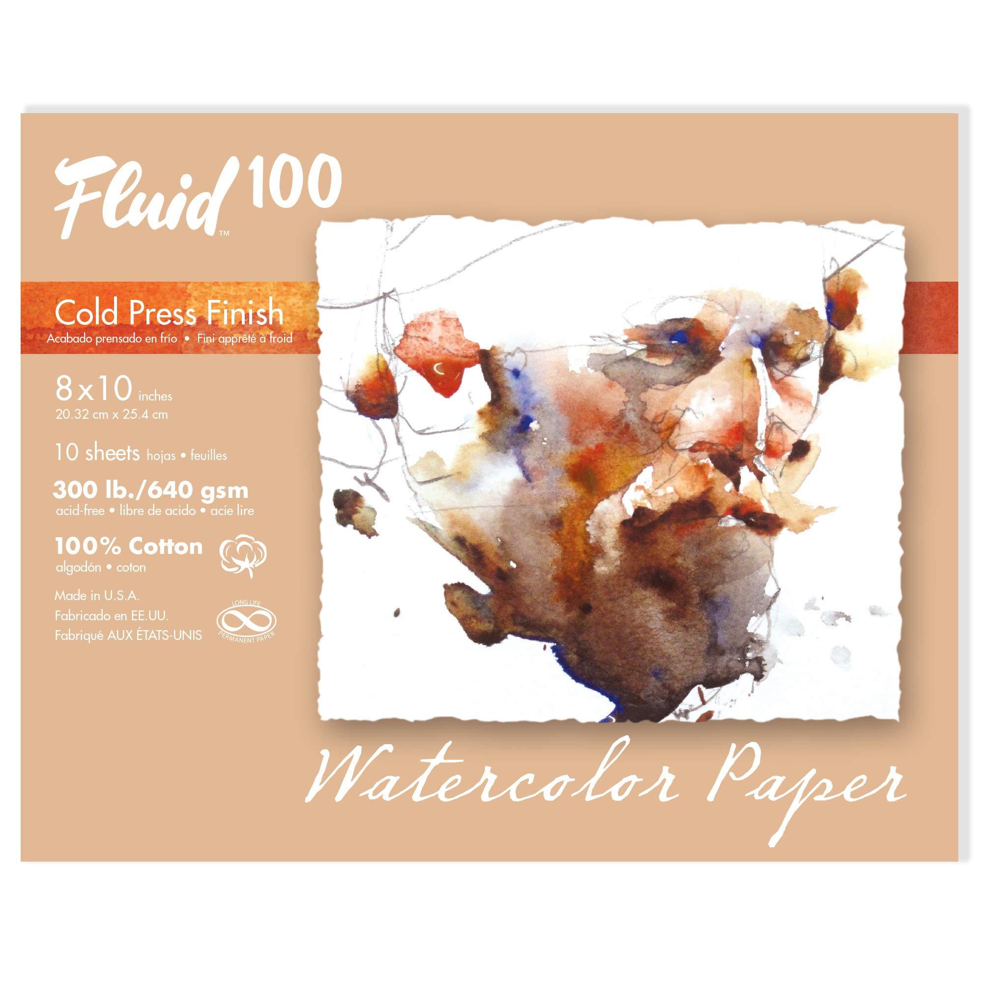 Speedball Art Products 821716 Fluid 100 Artist Watercolor Paper 300 lb Cold Press, 8 x 10-Inch Pochette, 100% Cotton 10 Count