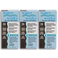 Water Works Powder Hair Color, Permanent, Medium Brown, 3 packs