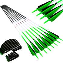 Linkboy Archery Carbon Arrows Hunting Practice Target Arrows Fluorescent Shaft with Removable Tip for Compound Recurve Long Bows Traditional Bow Arrow Spine 300 340 400 500 600, Pack of 6/12PCS