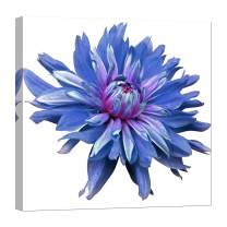 Wall Art for Living Room - Glow in The Dark Canvas Painting - Stretched and Framed Giclee Print - Flower Blooms Brightly Blue Pink - Wall Decorations for Bedroom - 24 x 24 inch