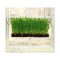 Window Garden Organic Wheatgrass Bundle – Attractive, Easy and Productive Grow Kit. The Ultimate Vertical Kitchen Garden, Everything You Need Plus 5 Refills. Great for Pets, Cats, Dogs. Super Deal.