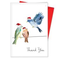 12-Pack Box Set of 'High Wire Birds' Blank Thank You Cards w/Envelopes 4.63 x 6.75 inch, Merry Christmas Note Cards for Holidays, Gifts, Watercolor Bird Illustrations, Notecard Stationery B3318IXTB