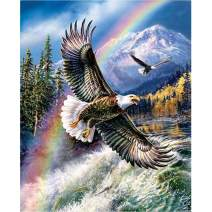 5D Diamond Painting Rainbow Snow Mountain Eagle Full Drill by Number Kits, SKRYUIE DIY Rhinestone Pasted Paint with Diamond Set Arts Craft Decorations (12x16inch)