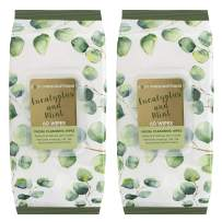 Body Prescriptions 2 Pack (60 Count Each) Eucalyptus and Mint Facial Cleansing and Gentle Make Up Remover Wipes – Flip Top Pack
