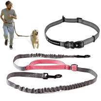 Pet Dreamland Hands Free Dog Leash for Running, Walking, Hiking, Cycling and Training. Bungee Harness with Adjustable Waist Belt, Padded Handle and Reflective Stitching. Small, Medium and Large Dogs