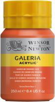 Winsor & Newton Galeria Acrylic Paint, 250ml Bottle, Cadmium Orange Hue