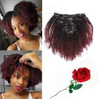 Ombre Curly Clip In Hair Extensions 4B 4C Afro Kinkys Curly Hair Extensions Clip In For Black Women 8A Virgin Natural Human Hair Full Head Kinky Hair Clip Ins Two Tone Ombre 120G #1b/99j AC 14Inch