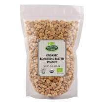 Organic Roasted and Salted Peanuts 8 oz. by Hatton Hill Organic