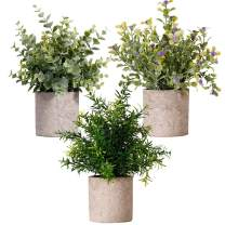NEW RUICHENG Artificial Plant, Plants Artificial Fake Mini Potted Plastic Plant Flower Eucalyptus Rosemary Gypsophila Green Real Small Potted Artificial Plant in Pot Set for Home Office Balcony Decor