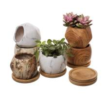 T4U 2.5 Inch Succulent Garden Pot with Bamboo Tray, Small Ceramic Multi Color Windowsill Plant Pot Cactus Herb Planter for Home and Office Decoration Birthday Wedding Christmas Gift Pack of 6