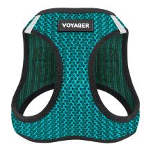 """Best Pet Supplies Voyager Step-in Air Dog Harness - All Weather Mesh, Step in Vest Harness for Small and Medium Dogs by Best Pet Supplies - Turquoise, Large (Chest: 18"""" - 21""""), 207-TQ-L"""