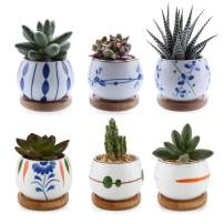 T4U Succulent Planters with Bamboo Tray 2.75 Inch - Set of 6, Small Cute Ceramic Cactus Pots with Drainage Hole for Home Office Desk Garden Decoration