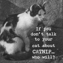 Trash Talk by Annie Catnip Magnet