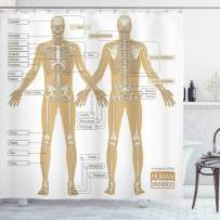 """Ambesonne Human Anatomy Shower Curtain, Diagram of Human Skeleton System with Titled Main Parts of Body Joints Picture, Cloth Fabric Bathroom Decor Set with Hooks, 84"""" Long Extra, White Tan"""