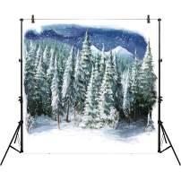 Allenjoy 10x10ft Winter Landscape Backdrop for Studio Photography (With Pocket) Christmas Forest Wonderland Snowflake Scene Holiday Background Newborn Party Decor Children Portrait Photo Prop Supplies