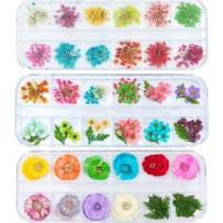 3 Pack/36 Different Shape Colors Natural Real Dried Flowers Nail Art Decoration Sticker For 3D Nail Art Acrylic UV Gel Tips