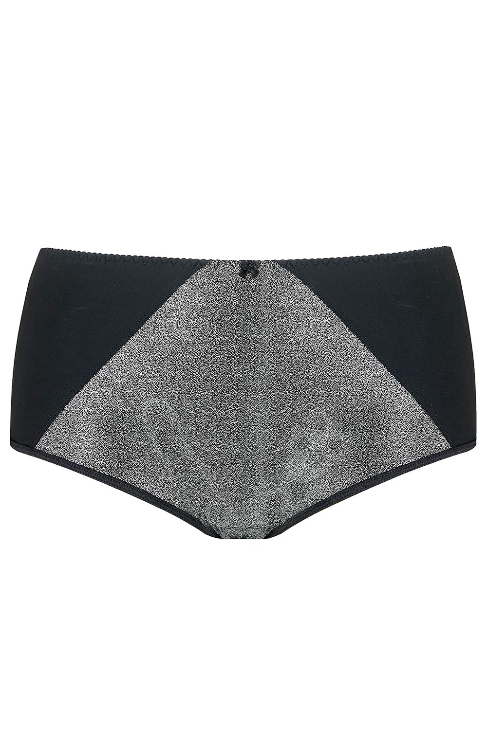 Silver Sparkly Metallic Panties (Regular and Plus Size) Sparkle Glitter Glam