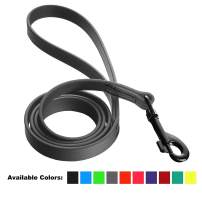 Dogline Biothane Waterproof Dog Leash Strong Coated Nylon Webbing with Black Hardware Odor-Proof for Easy Care Easy to Clean High Performance for Small or Large Dogs Made in USA 4 or 6 ft Lead