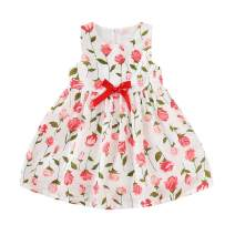 Toddler Baby Girl Rose Printed Floral Bowknot Dress Spring Summer Princess Dress Outfits