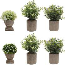 HC STAR Potted Artificial Pant Fake Green Grass with Pot Decorative Lifelike Set of 6(High Pot,Green-4 & White-2)