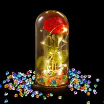 Aokebeey Galaxy Red Rose Flower with Light in Glass Dome Gift for Birthday, Mothers Day, Valentine, Anniversary, Wedding (Diamond)