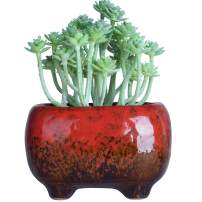 Succulent Pots | Ceramic Bonsai Pot with Drainage Rectangular Flower Plant Cactus Planter, 4.8x3.4x3 inch, Red