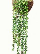 "Ahvoler Artificial Succulent Plants, String of Pearls, 28"" Hanging Basketplant, Lover Tears Plants (Green-2)"