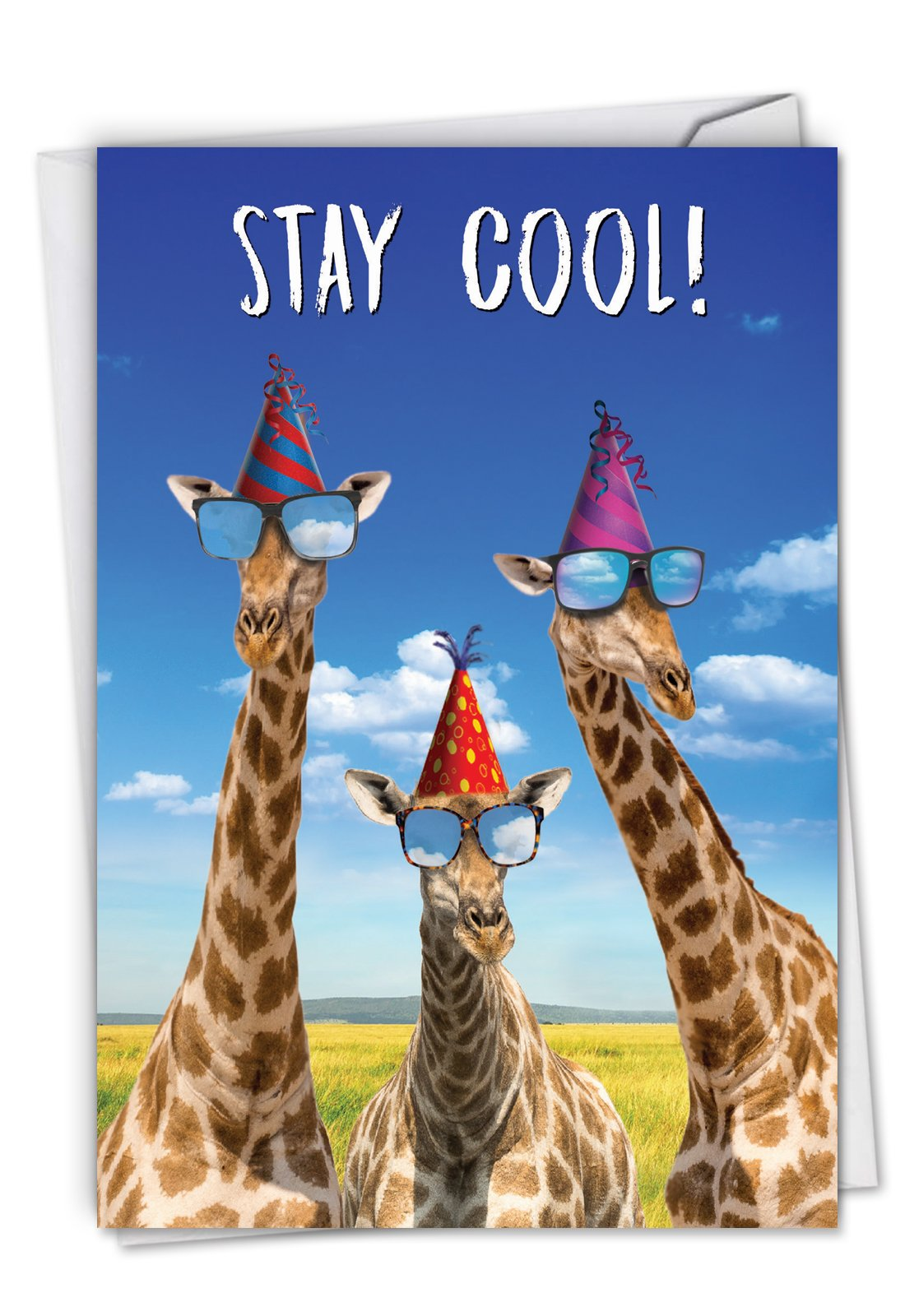 Cool Giraffes Funny Birthday Card with Envelope 4.63 x 6.75 inch - Happy Birthday Greeting Card for Kids, Boy, Girl - Colorful Zoo Animal Congratulations and Bday Note Card - Notecard Gift C6335BDG