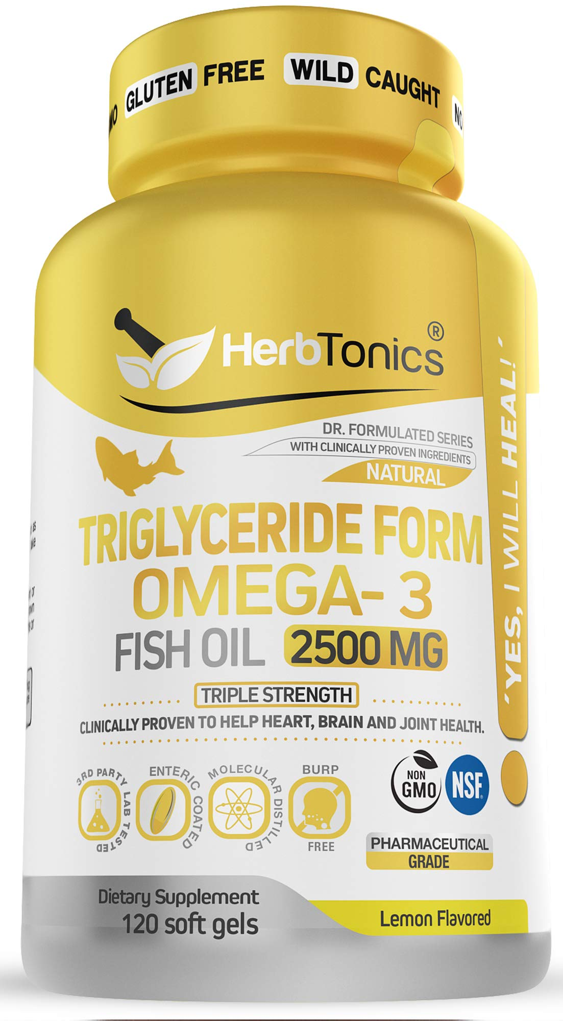 Triglyceride Omega 3 Fish Oil 2500 MG Triple Strength Burpless High EPA & DHA, NSF-Certified, 120 Soft Gel Capsules No Fishy After Taste - Heart, Joint and Brain Health