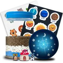Amazing Blue LED Terrarium Science Kit - Evviva Sciences - Educational Set for Kids - Choose Beet/Turnip/Radish Seeds OR Chia/Wheatgrass Seeds - Space & Animal Stickers - Miniature Garden in a Jar