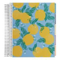 Erin Condren 12-Month 2019-2020 Deluxe Monthly Planner 7x9 (September 2019-August 2020) - Fruity Beauty, Colorful Layout