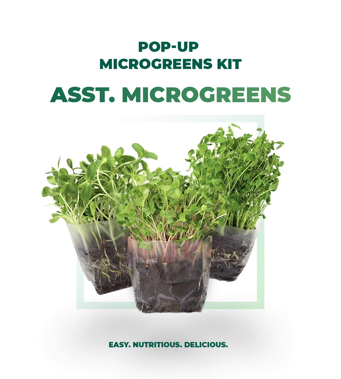 Indoor Microgreens Seed Starter Vegan Growing Kit – Includes Assorted Seeds, 3qts Organic Fiber Potting Soil and Pop-Up Bag – Add Water and Grow Vegetables for Healthy Salads – by Window Garden