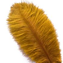 Piokio 20 pcs Natural Gold Ostrich Feathers 6-8 inch(15-20 cm) for Wedding Party Centerpieces Halloween Christmas Home Decorations