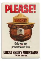 Lantern Press Great Smoky Mountains, Tennessee - Smokey Bear - Vintage Poster (12x18 Aluminum Wall Sign, Wall Decor Ready to Hang)