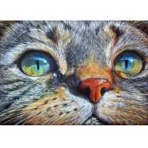DIY 5D Diamond Painting Kit, Full Diamond Big-Eyed Cat Embroidery Rhinestone Cross Stitch Arts Craft Supply for Home Wall Decor 11.8x15.8 inch