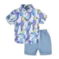 BIG ELEPHANT Unisex Baby 2 Pieces Graphic Short Sleeve Shirt Pants Set
