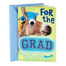 Hallmark Funny Graduation Card (Donkey With Googly Eye, You Really Kicked Some…)