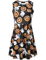 SSLR Women's Printed A-Line Crew Neck Sleeveless Halloween Dress (X-Small, Black(3912))