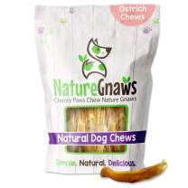 Nature Gnaws Ostrich Tendon Sticks for Small Dogs - Single Ingredient Natural Dog Chew Treats - Rawhide Free - (8oz)