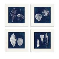 WEXFORD HOME Collection by Carol Robinson Set of 4 Gallery Wrapped Canvas Wall Art, 32x32, Cyanotype Feather/Frameless