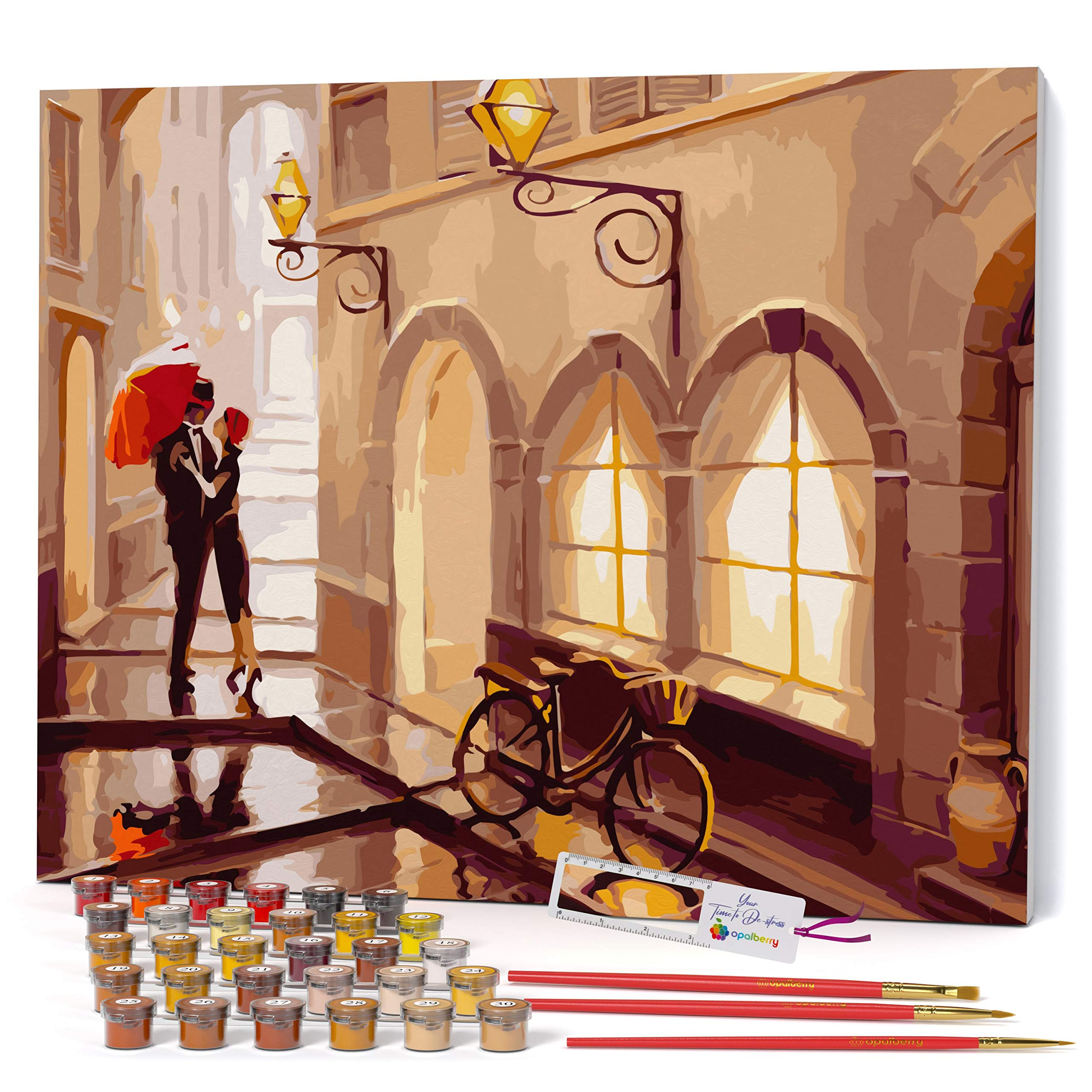 Opalberry Paint by Numbers for Adults Framed Canvas - Adults' Paint-by-Number Kits - Framed Paint by Numbers for Adults Beginner - Paint by Numbers for Adults with Frame - Art Paint by Numbers