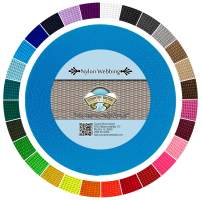Country Brook Design - Durable 1 Inch Heavy Nylon Webbing - 29 Vibrant Colors (Ice Blue, 10 Yards)