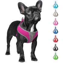 Fida Step-in Dog Harness, Superior Reflective Puppy Vest Harness- All Weather Air Mesh, Adjustable Harness for Small Dogs (S, Pink)
