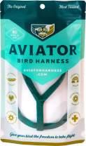 The AVIATOR Pet Bird Harness and Leash: Mini Green