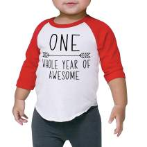 Bump and Beyond Designs Boy First Birthday Shirt 1st Birthday Boy Outfit