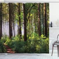 """Ambesonne Forest Shower Curtain, Pathway in a Shady Forest of Bushes and Thick Trunks Grass Unique Wild Life Scenery, Cloth Fabric Bathroom Decor Set with Hooks, 75"""" Long, Green Brown"""